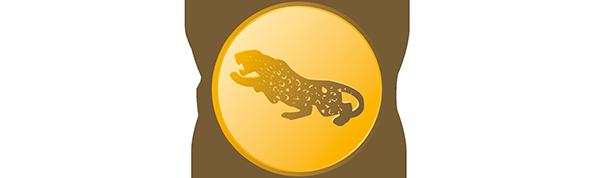 Jaguargruppen.se